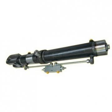 Pompa idraulica manuale Pompa idraulica manuale 700 Bar 350CC con tubo 4 piedi