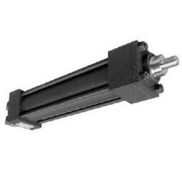 FAAC LEADER 230V Kit Automazione Oleodinamica per Cancelli (105633445)