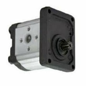 NUOVA LAMBORGHINI mlsd/GP.205 POMPA IDRAULICA Gear mlsd/GA208C2 mlsdgp 205 FI881762