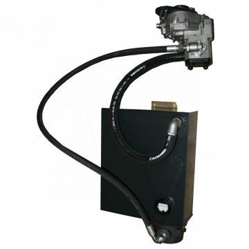 Pompa Idraulica Per Sollevatore A Forbice 8 Litri 2 Linee Rimorchio Ribaltabile