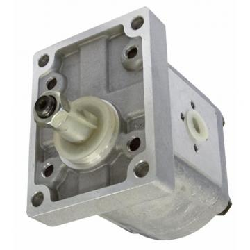 KIT guarnizione in viton per soddisfare standard di Gruppo 2 - 2SPA GALTECH Pompa ad Ingranaggi