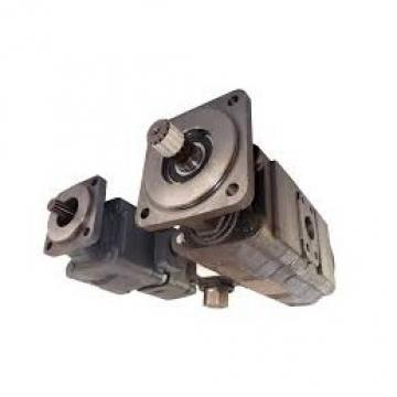 NUOVO Servosterzo idraulico pompa per CITROEN C-CROSSER (EP _)/DSP188/